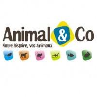 Animal&Co